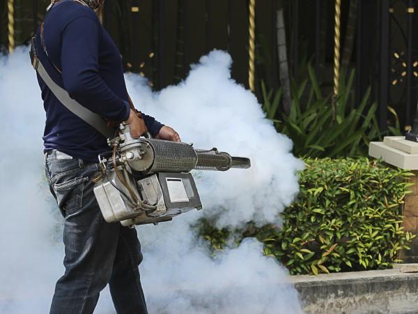 Fumigacja - skuteczna metoda dezynsekcji